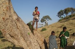 איך זה היה לגדול באתיופיה?